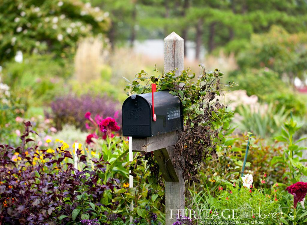 mailbox on wooden post in wild flower garden